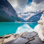Cuidados especiales para las mascotas en verano