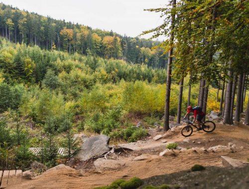 Bicicletas de montaña: cómo elegir el modelo perfecto